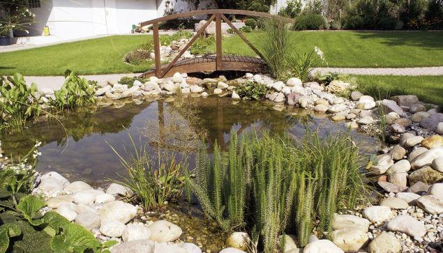 Návod: Jak postavit zahradní jezírko