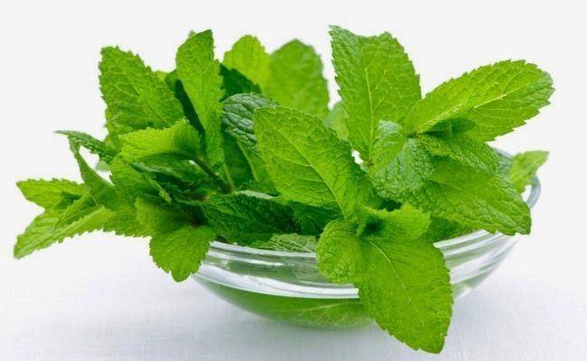 Homemade Mint Face Mask for Acne Scars #naturalskincare #healthyskin #skincareproducts #Australianskincare #AqiskinCare #SkinFresh #australianmade