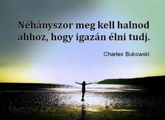 Charles Bukoski idézet az élet élvezetéről. A kép forrása: Izabella Lakatos