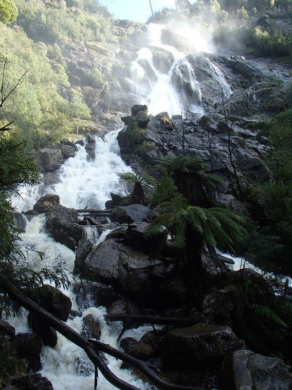 St Columba Falls – Pyengana, Australia - Atlas Obscura