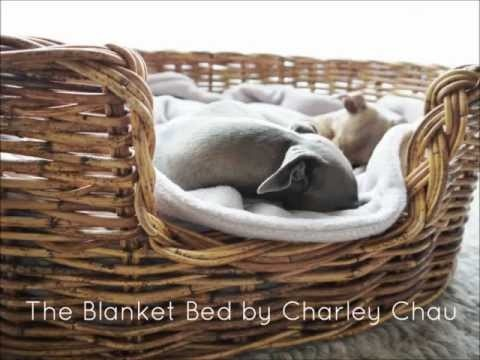 rattan dog bed 36 best wicker rattan dog beds images on pinterest rattan