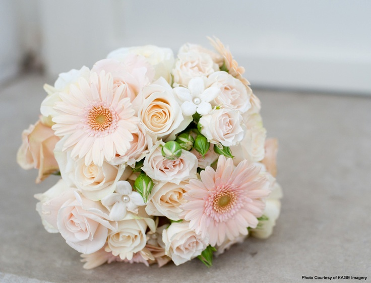 Wedding Bouquet Of Gerbera Daisies : Best gerbera wedding bouquets ideas on