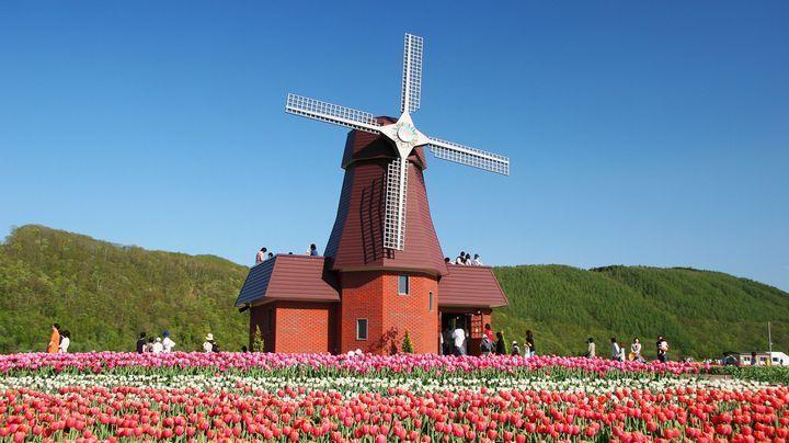 かみゆうべつチューリップ公園 北海道 絶景Hokkaido