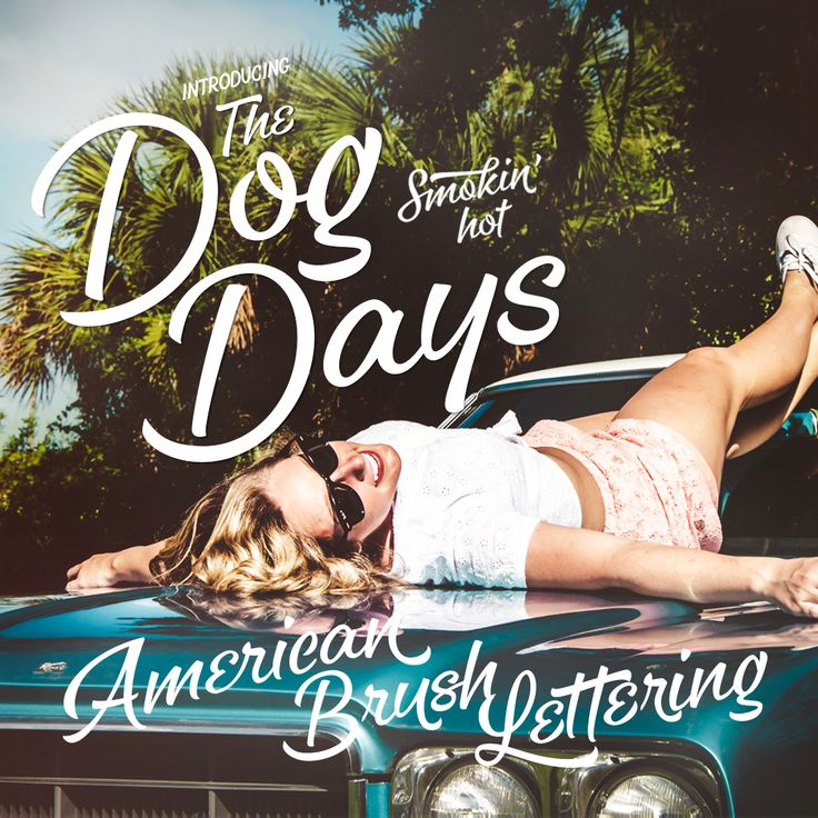 Dog Days Lettering Brush Font on Behance