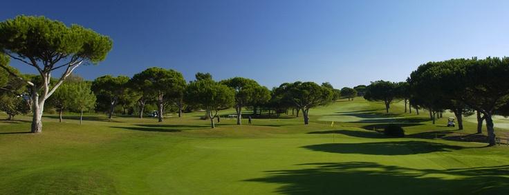Pinhal Algarve
