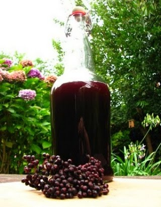 Elderberry Syrup  2 C fresh elderberries or 1 C dried   3 C filtered water  1 C local raw honey    Cook water and berries until reduced by 1/2. Smash berries and strain. Add honey and cook to melt. If using Agave or other non-honey sweetenter, add 3-4 oz brandy or 100 proof vodka.