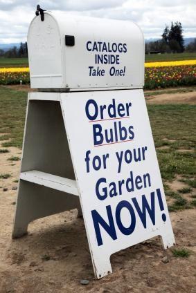 Use mail order gardening catalogs to plan your next garden.