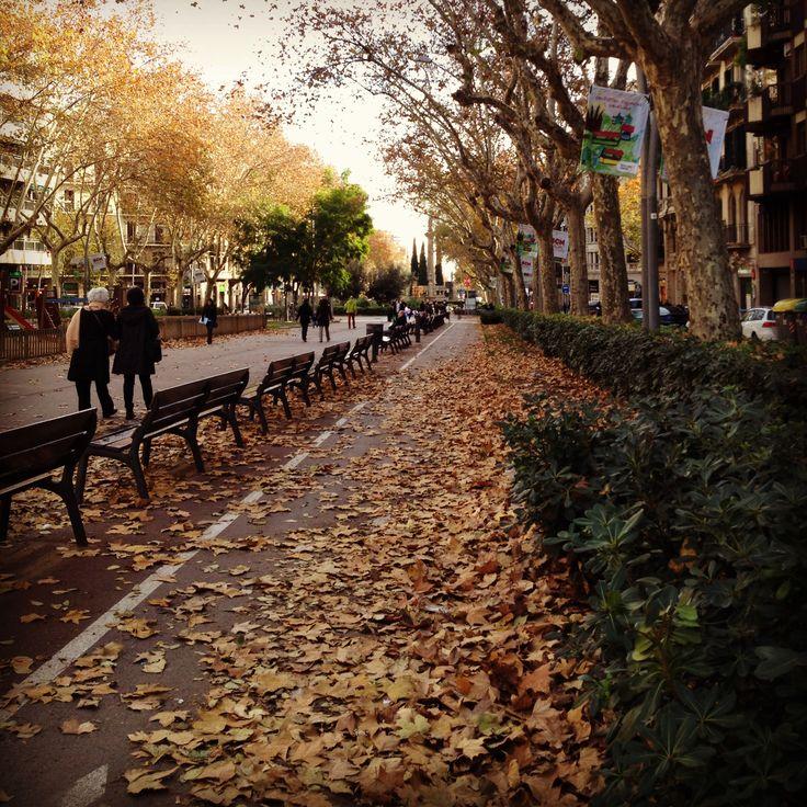 Autumm around- Passeig Sant Joan. Barcelona, Catalonia