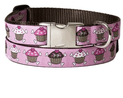Dog Collars To Stop Wandering