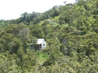 Te Mata Lodge - $130/night - 20 mins north of Thames, includes kitchen and cot