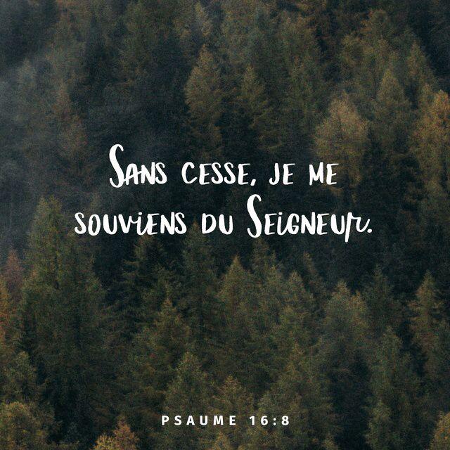 «Sans cesse, je me souviens du Seigneur. Puisqu'il est près de moi, je ne tombe pas.» Psaumes 16:8 PDV http://bible.com/133/psa.16.8.pdv