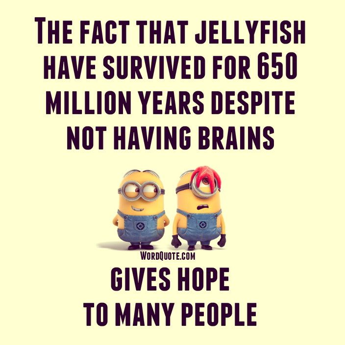 The Fact That Jellyfish Have Survived For