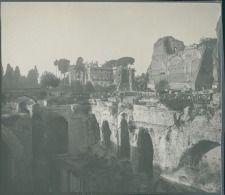 Italia, Roma. Monte Palatino, ca. 1905  vintage silver print. Italy.  Tirage…