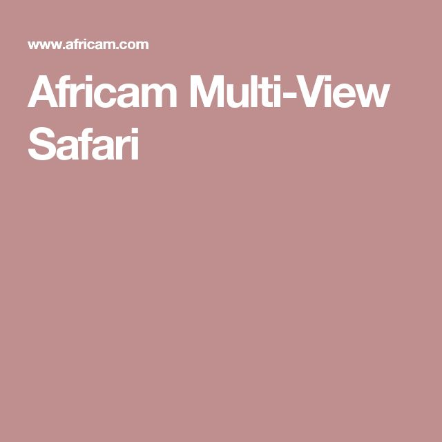 Africam Multi-View Safari