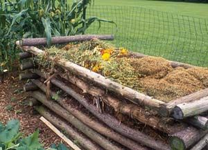 Compost Made Easy  These 10 facts about composting will help you turn food and yard waste into garden gold.