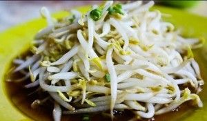 Best Benefits of Sprouts - The most well-known benefit of bean sprouts is to provide fertility for couples who want to get offspring quickly