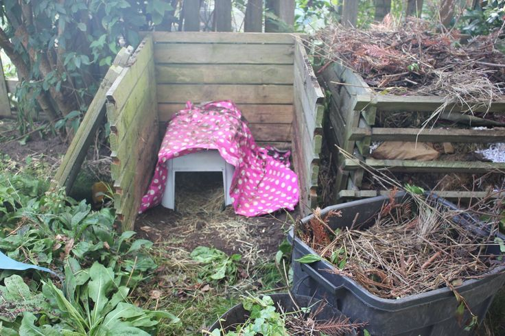 build a hedgehog house underneath the compost heap - cover with leaves and twigs and put some rungs on the front to deter cats - see pinner Little Silver Hedgehog board <3
