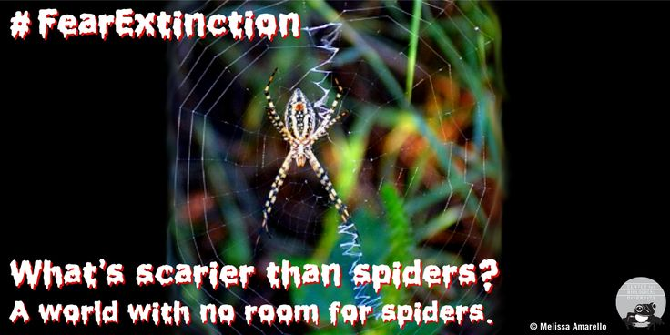 Spiders help control insects that destroy food crops for people.