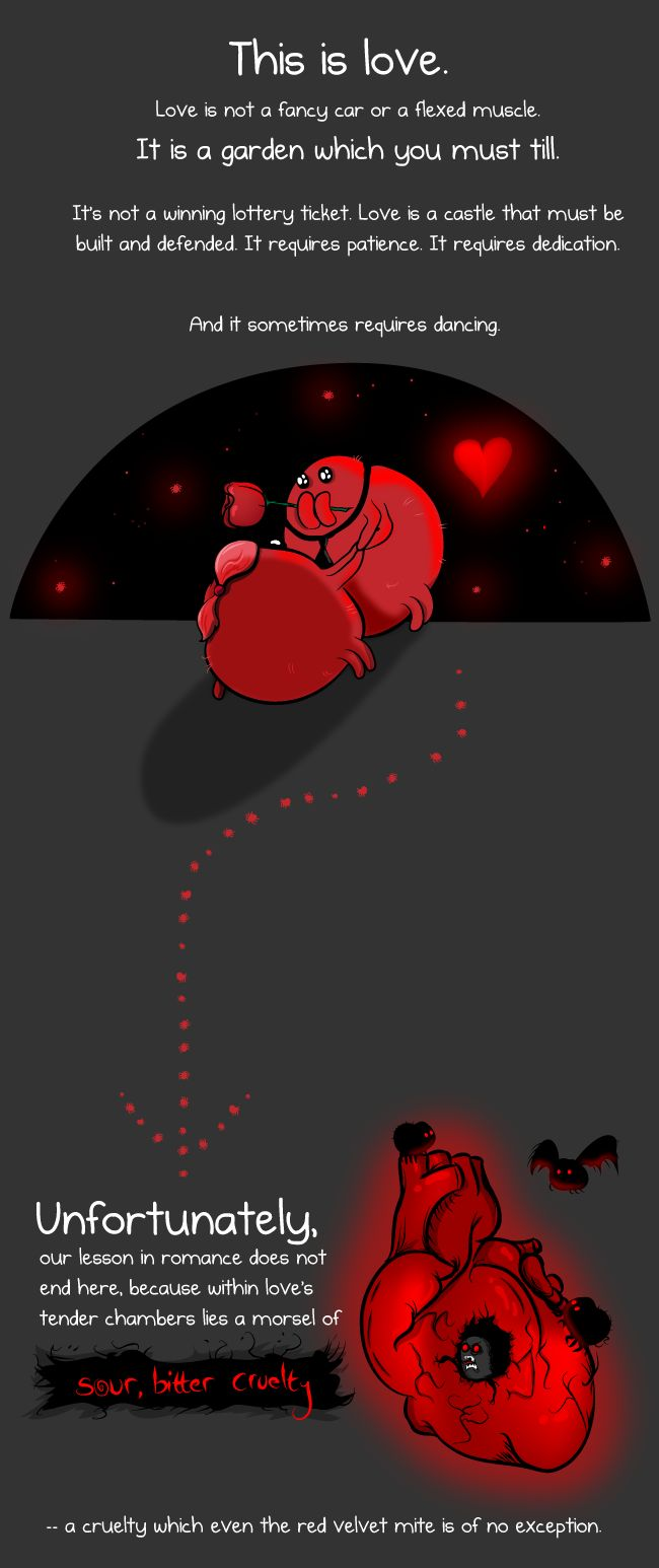 This is a red velvet mite and he is here to teach you about love - The Oatmeal #jizzOnyourCastle