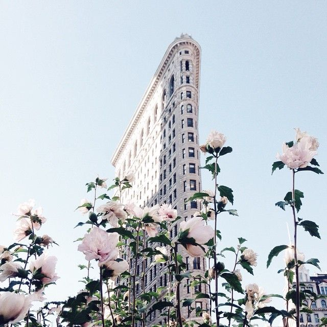 The Flatiron building and flowers (Photo by linadelika on Instagram)