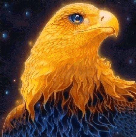 сделать стоянку галактические птицы картинки все было