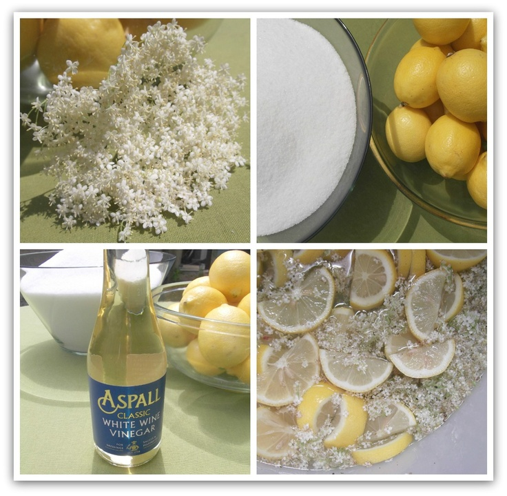 A Bit of Summer Fizz....How to make Elderflower Champagne