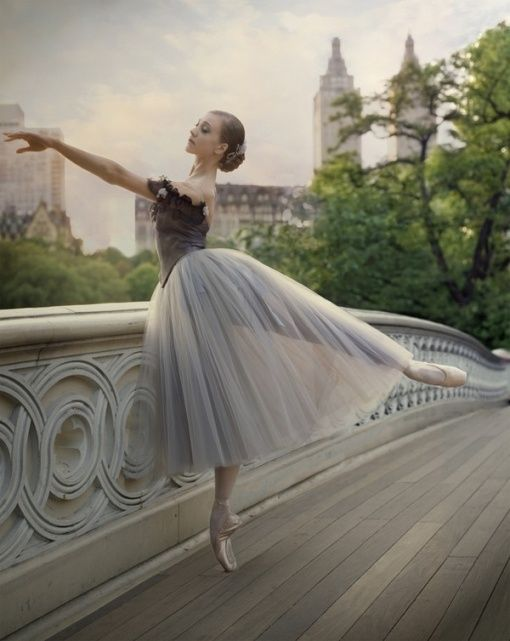 dancer  #ballet ballet