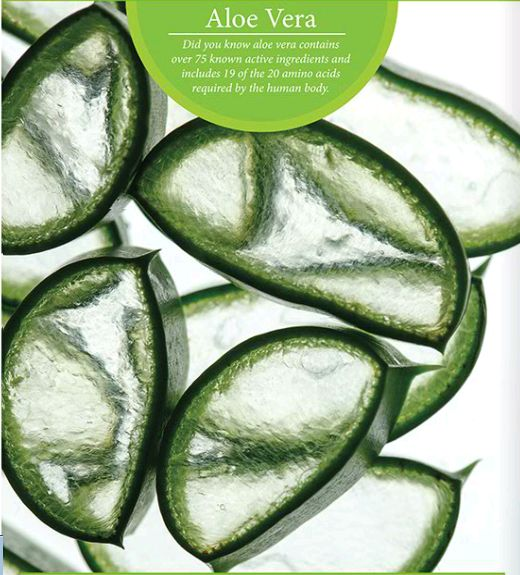 Aloe Vera Gel Forever Living Products
