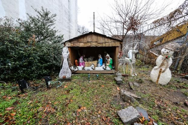 Feral Cats Take Over Nativity Scene, to Delight of Red Hook Neighbors - Red Hook - Local Neighborhood News - DNAinfo.com New York