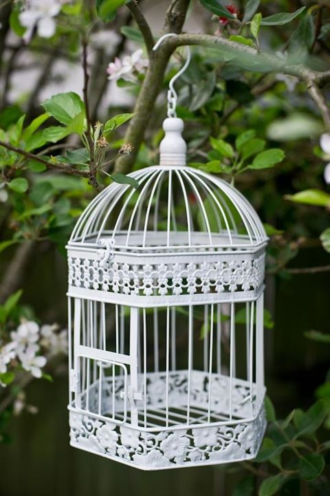 We are seeing lots of these gorgeous birdcages on tables amongst desserts but how fab does it look hanging outside!