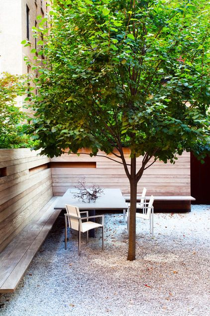 Pretty Trees for Patios, Paths and Other Tight Spots Choose trees for their size, shape and rate of growth — or shape them to fit your space. Here's how to get started