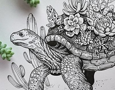 A connection of an animal and it's habitat. A desert tortoise with succulents growing on it's shell. Design available at my DBH store: https://www.designbyhumans.com/shop/WKolinska/