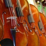 Violin Cost