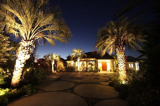 夜空にそびえ立つヤシの木。艶やかな姿が魅了する、南の島のワンダーランド。 #lightingmeister #gardenlighting #outdoorlighting #exterior #garden #lightup #nightsky #palmtree #fascinating #tropical #island #wonderland #pinterest #夜空 #ヤシの木 #艶やか #魅了 #南の島 #南国 #ワンダーランド #家 #庭