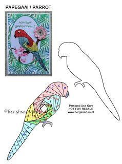 Irisvouwen: Papegaai / Parrot