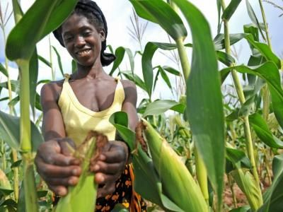 United Nations led partnership together with the Green Climate Fund to support nearly 1 million farmers in Zambia | UNDP's Climate Change Adaptation Portal
