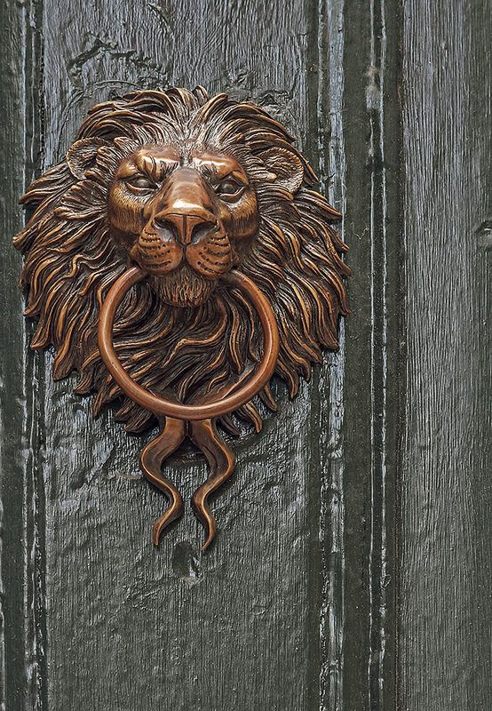 detailed lion door knocker