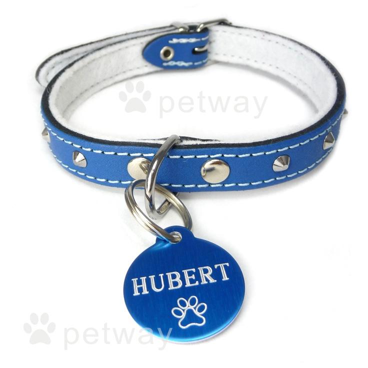 Modrý psí obojek podšitý semišovou kůží, zdobený jehlánky. Psí známka - eloxované kolečko.