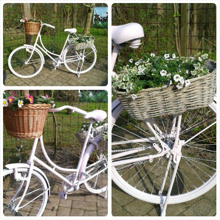Mijn oude fiets gepimpt, voor in de tuin