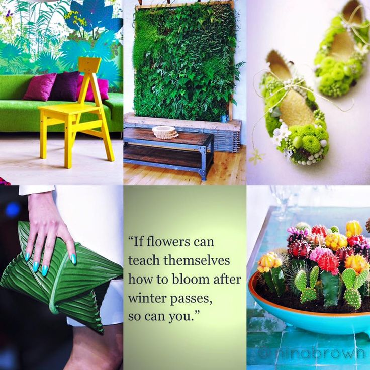 Teach yourself how to bloom. #bloom #life https://www.facebook.com/www.ninabrownstylecoach/photos/pb.494961253931382.-2207520000.1458636257./834484453312392/?type=3&theater www.ninabrown.co.za
