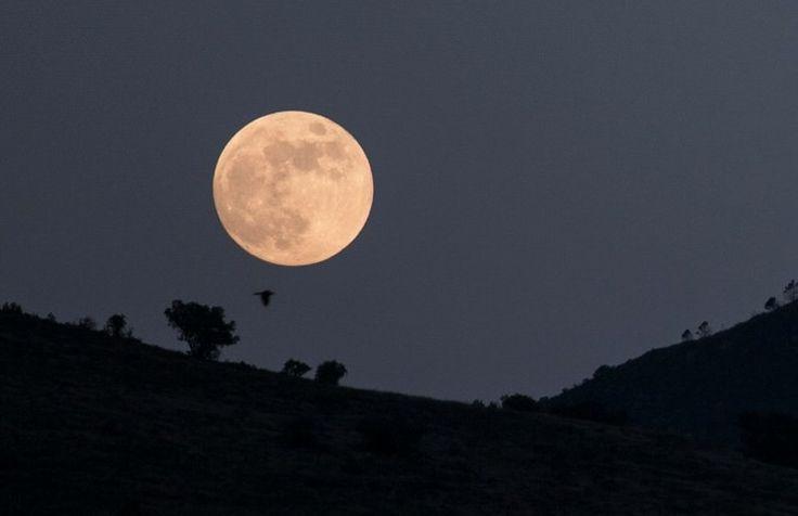 Hoy ocurrirá eclipse penumbral de Luna - La Jornada