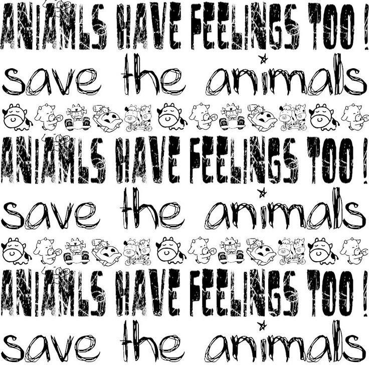animals have feelings just like humans essay Thus, animals should be treated with the same respect as humans yet animals  animal testing is acceptable because animals are  animals have feelings,.