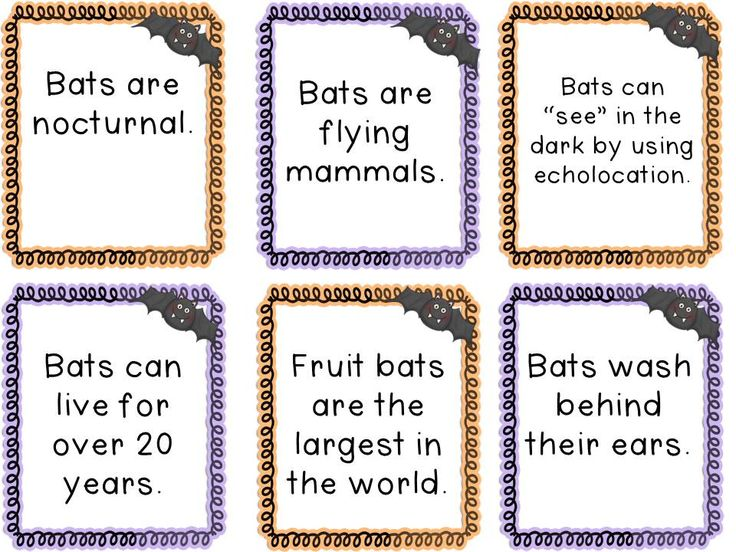 1000 Images About Preschool Facts On Pinterest Cover Pages Mentor