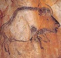 Chauvet cave, running bison.
