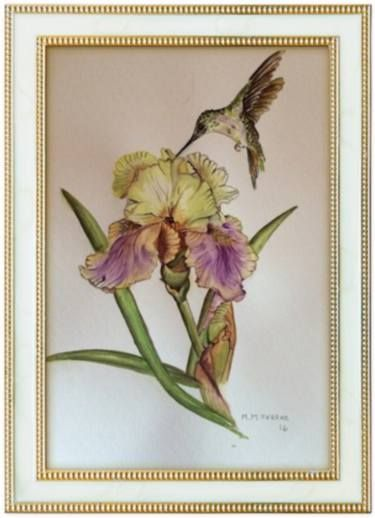 Lily & Hummingbird