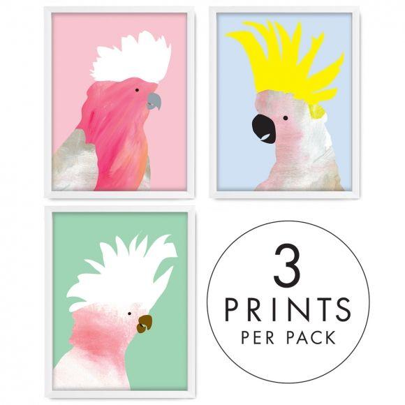 Fancy feathers wall art (set of 3) | hardtofind.