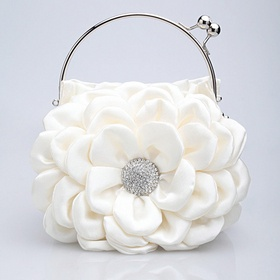 Cute bag for a spring/summer formal event only 23.90 on sale at opentip.com