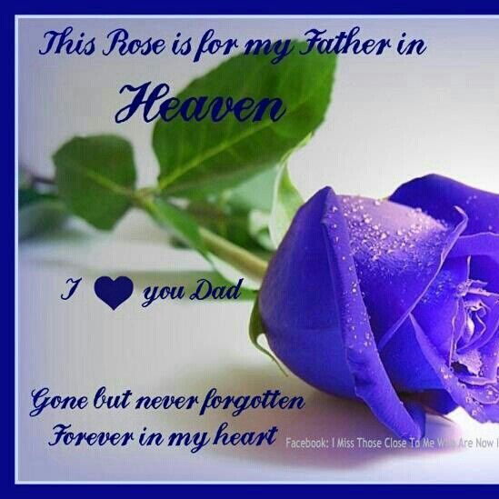 Missing Your Dad In Heaven Quotes: A Rose For My Dad In Heaven . I Love And I Miss You