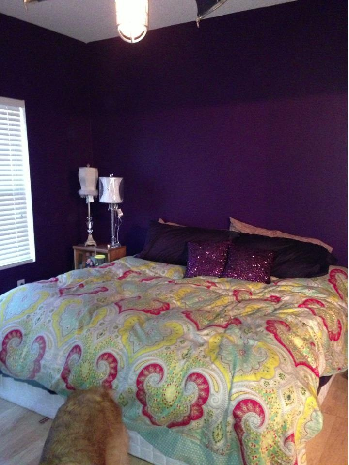 Photo Decoration Chambre Behr Purple Bloom. Lovely. My Room Is This Color :) | Room