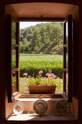 View from a Summer window